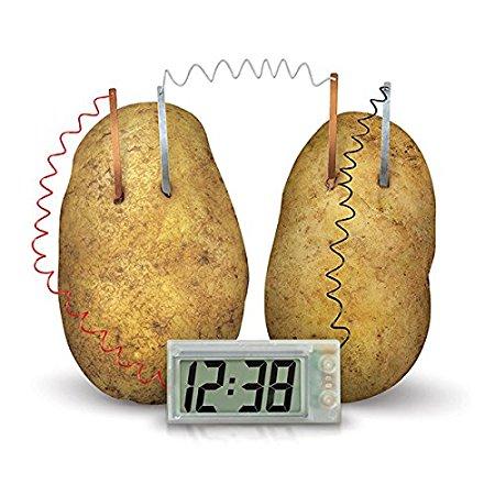 4m-greeen-science-orologio-patata-03275